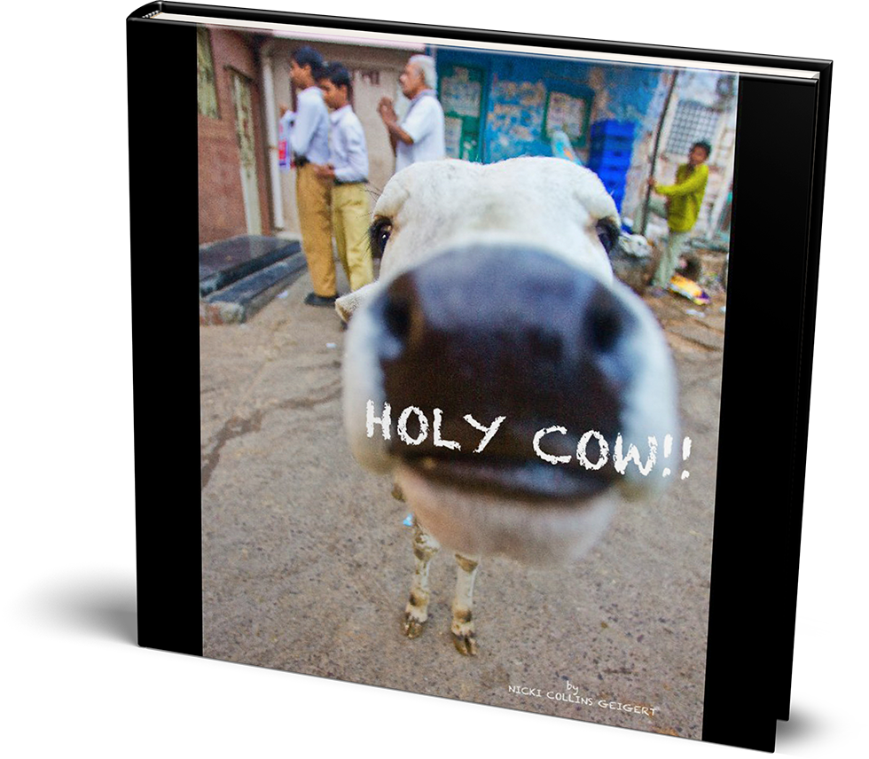 holycow book cover