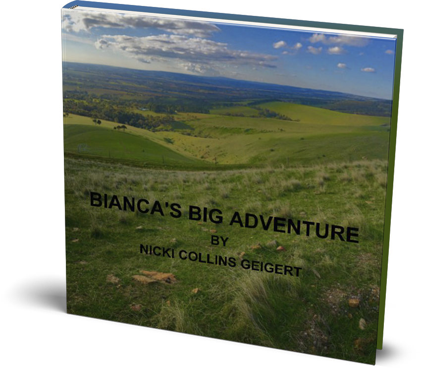 Bianca's Big Adventure book cover