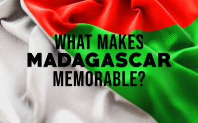 What Makes Madagascar Memorable?