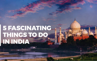 5 Fascinating Things to Do in India