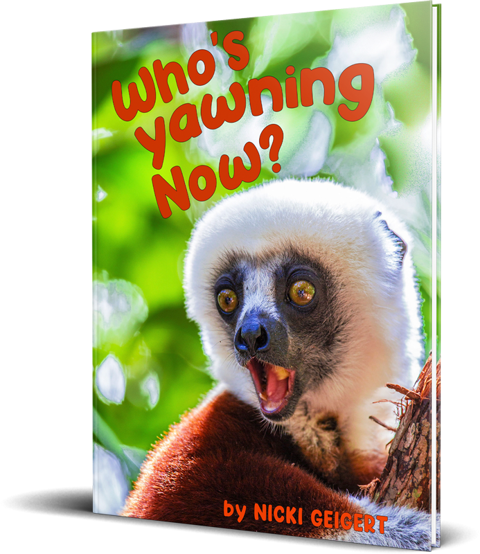 Whos Yawning Now Book Mockup