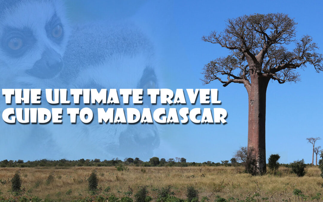 The Ultimate Travel Guide to Madagascar