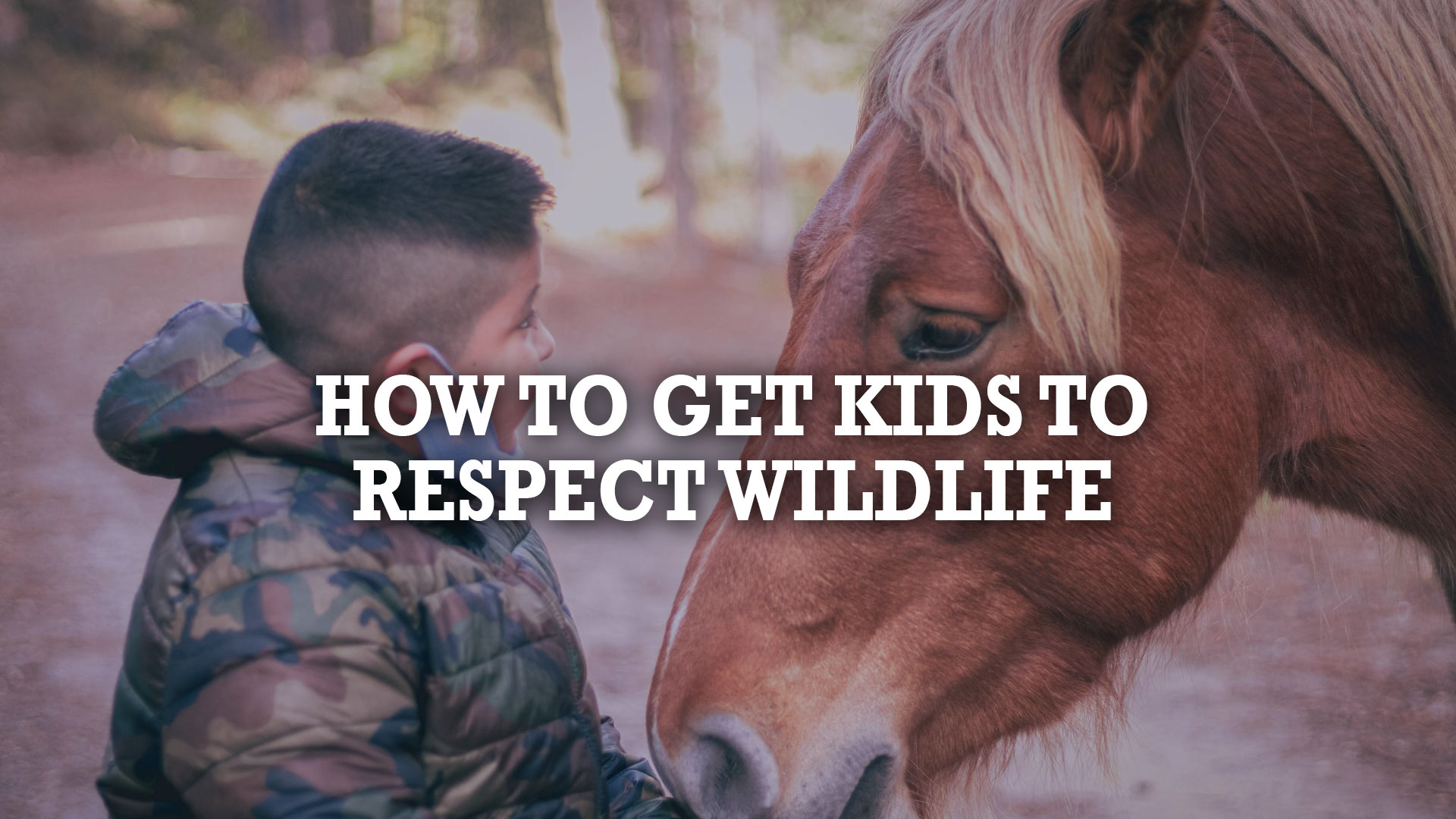 How To Get Kids To Respect Wildlife