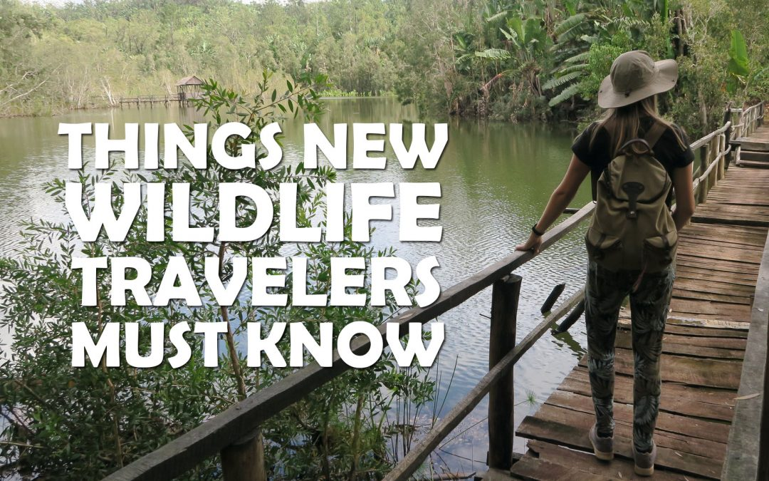 Things New Wildlife Travelers Must Know