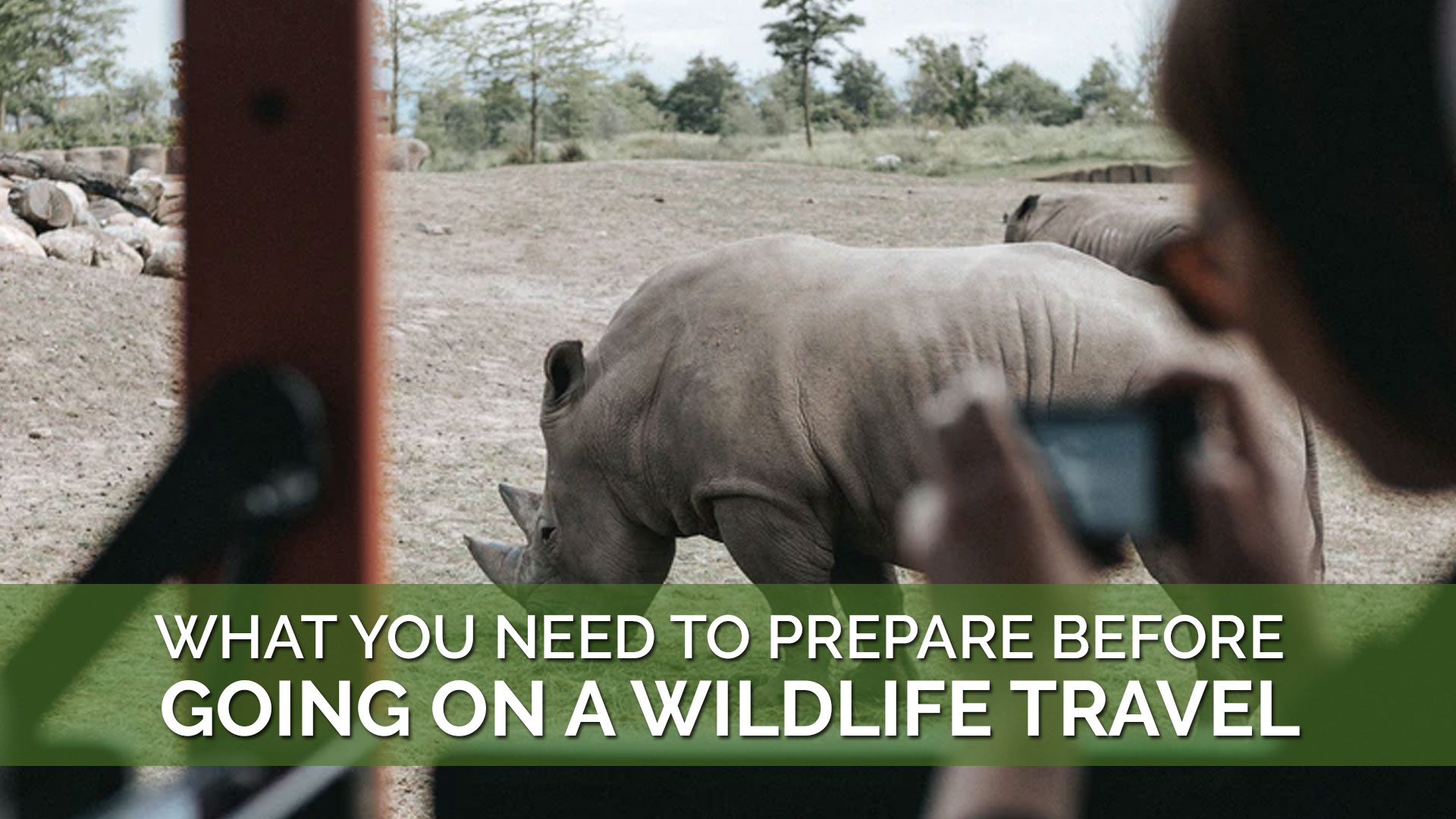 What You Need To Prepare Before Going On A Wildlife Travel