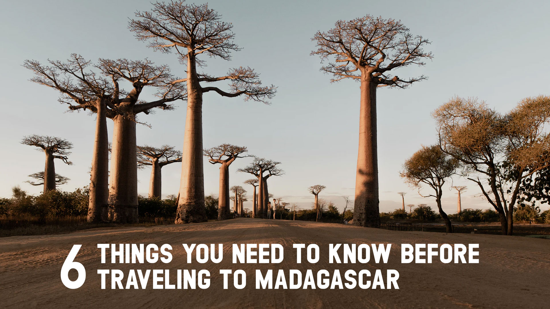 6 Things You Need To Know Before Traveling To Madagascar