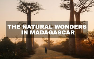 The Natural Wonders in Madagascar